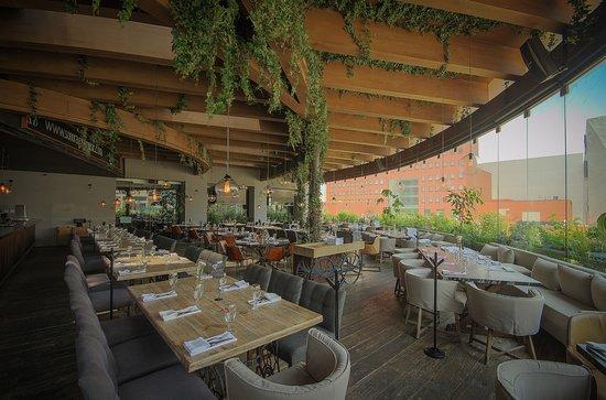 Nuevo León restaurantes